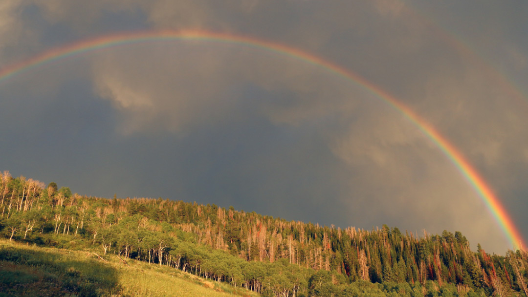 Ski-Haus-Steamboat-Springs-Colorado-National-Parks02