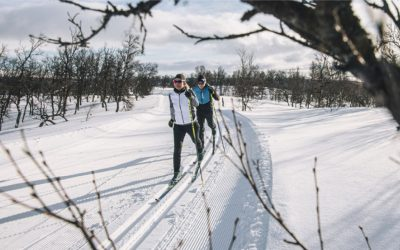 A XC Skier's Guide or How to Understand A Misunderstood Sport
