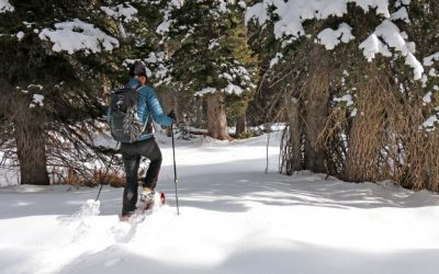 TSL Snowshoes, Made In The French Alps
