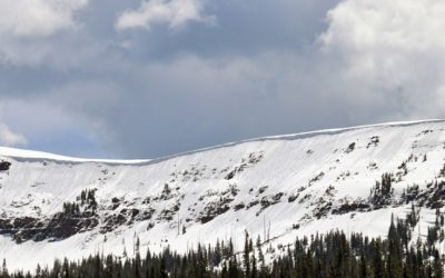 2020 Ski Haus & C.A.I.C Avalanche Awareness Clinic