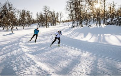 Just A Few Of Our Favorite Things For Nordic Skiers