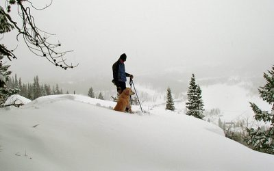 Snowshoeing In And Around Steamboat Springs, Colorado