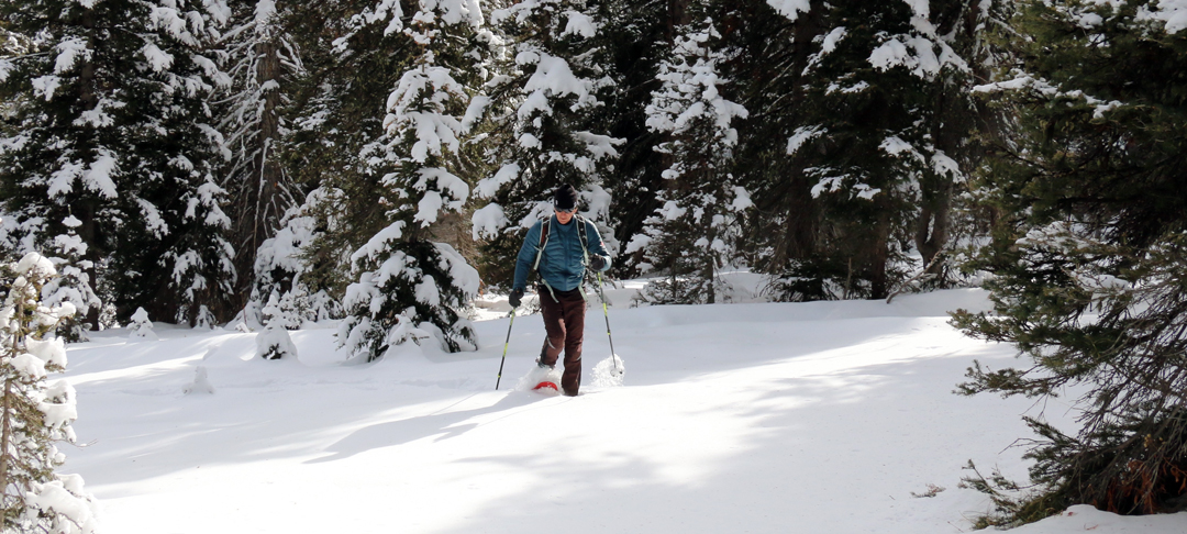 Snowshoeing through deep snow builds muscle and good health