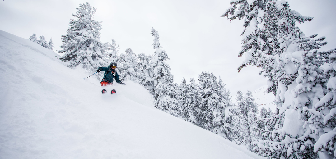 demo sale for all mountain skis